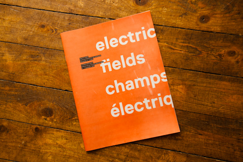Electric Fields 2010 (Paul Galipeau/Artengine.ca)